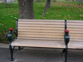 Apples Bench 1 by marigrace