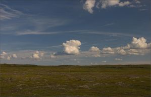 Lambs clouds by NikolaiMalykh
