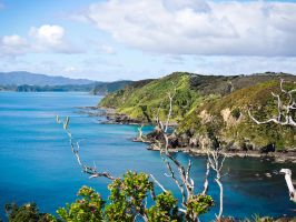 The Bay of Islands Coast II by Ajumska