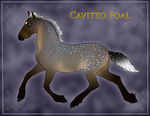 1284 Cavitto Foal Design by TheMs0kitty