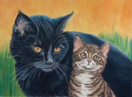 Blacky and son, warriorcats by Sarahharas07