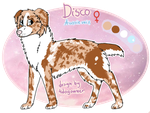 Disco - Reference Sheet by Aussienka