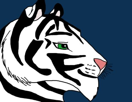 Alel the white tiger- Redone by dragonscale196