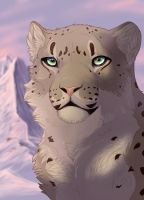 Atanu Snow Leopard by akeli