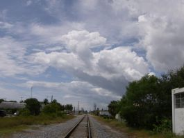 Look out there's no train coming by R1cc4