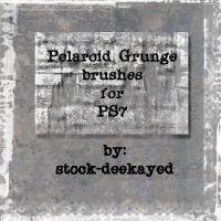 Polaroid Grunge Brushes by stock-deekayed