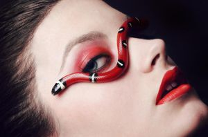 Python Series - Milk snake II by diginoobSI