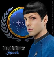 Federation Posterboy by kayleightalitha