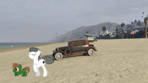 Walther and Tommy at the beach (GTA5 ONLINE) by XxFlamerunnerxX