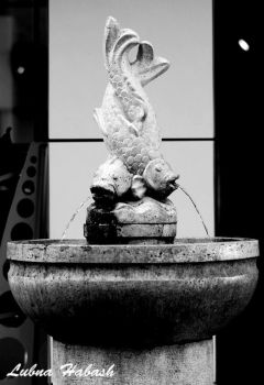 Water Fountain by lubnahabash