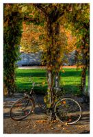 Bicycle - Fahrraeder HDR by ceasetobeme