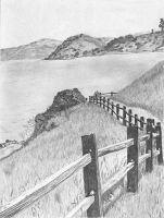 California by DrawingsByTony