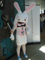 Otakon 2009 Raving Rabbids by Ho-ohLover