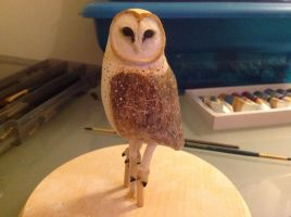 Barn Owl painted by tld7