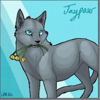Jaypaw by Idess