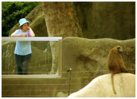 A day at the zoo Part 3 by Steinn-Hondkatur