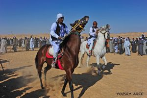 West Aswan Horse racing  03 by Nile-Paparazzi