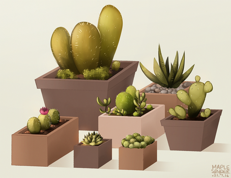 Succulents by MapleSpyder