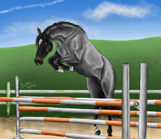 Showjumper by Minthiy