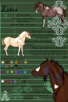 Letos Breed Sheet by broomstick88