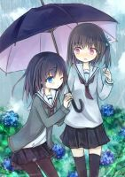 rainy day by amkn