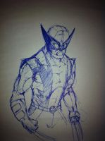 wolverine by dragonite838