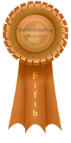Fifth Ribbon by BV-Academy