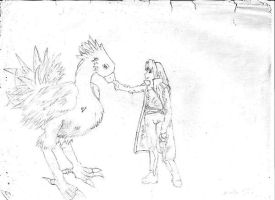 Sephiroth and Chocobo by Zashikate