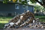 Wood Pile by JewelsStock