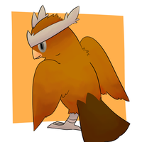 Noctowl by Lexi247