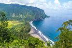 Waipio Valley by Daggettgirl