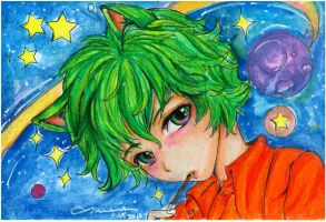 Space Kitty ACEO by marikit