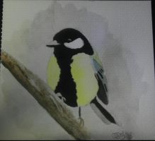 Great Tit 01 by Carrie-AnneSevenfold
