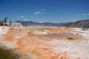 Yellowstone Park by thevictor2225