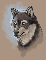Imaginary Wolf Face 1 by Pseudolonewolf