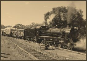 A Timeless Scene - NSW Goods by RedtailFox