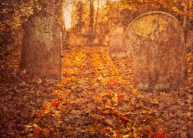 Autumn graveyard by grbush