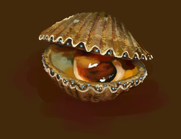 Sketch Daily - Scallops by katiepox
