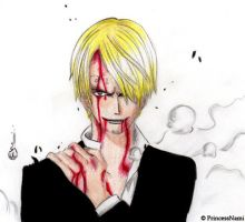 Sanji - keep on fighting by PrincessNami