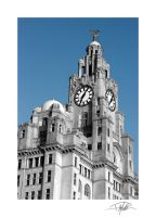 Liver Building - Liverpool 2 - Framed - B+W+Blue by Paul-Madden