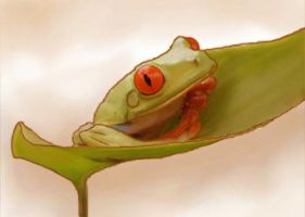 Red-eyed Tree Frog_pt.3 by restlesswillow