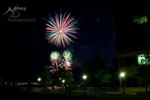 Independence Day 7 - 2013 by Nebey