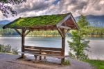 The Mossy Lake Bench by immauss