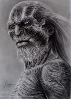 White  Walker by ochopanteras