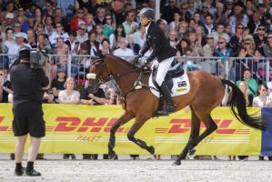 3DE Show Jumping Phase Stock 160 by LuDa-Stock