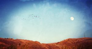 Above The Mire by PortraitOfaLife
