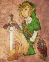 Link by bllvr801