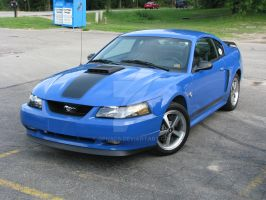 2004 Ford Mustang Mach 1 by Qphacs