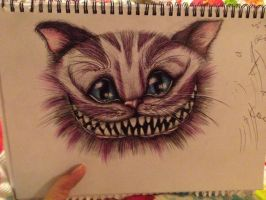 Cheshire cat :) by encryptedsouls