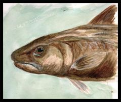 The Unhappy Fish by JenTheThirdGal